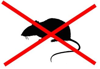 Conformément à la loi, la Ville ne distribuera plus de produits anti-rats