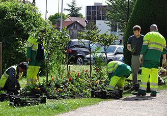 L'entretien des espaces verts